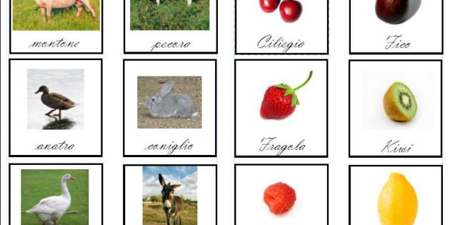 le prime carte delle nomenclature