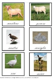 gli-animali-della-fattoria