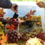 attività montessori autunno
