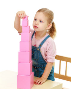 torre rosa istruzioni