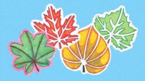 attività con le foglie